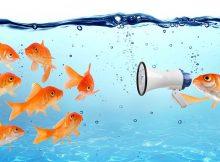 Fish with megaphone